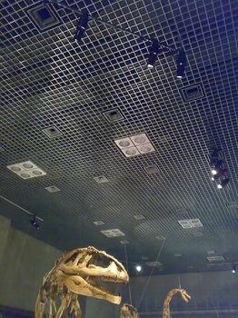 090313_大恐竜03.jpg