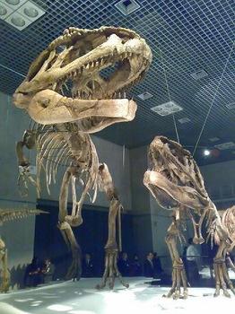 090313_大恐竜展02.jpg