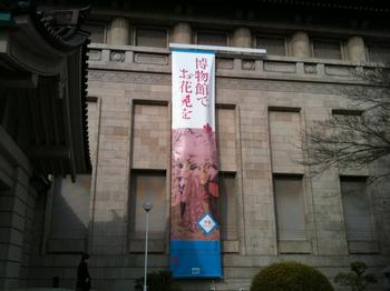 博物館でお花見をバナー_5249.jpg